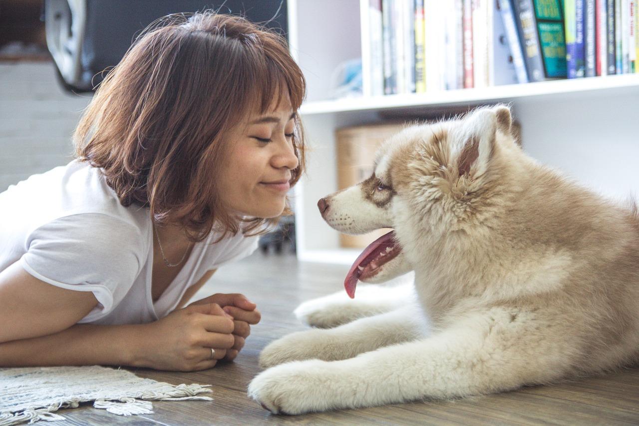 Il tuo cane soffre di alitosi? I rimedi li hai in casa!