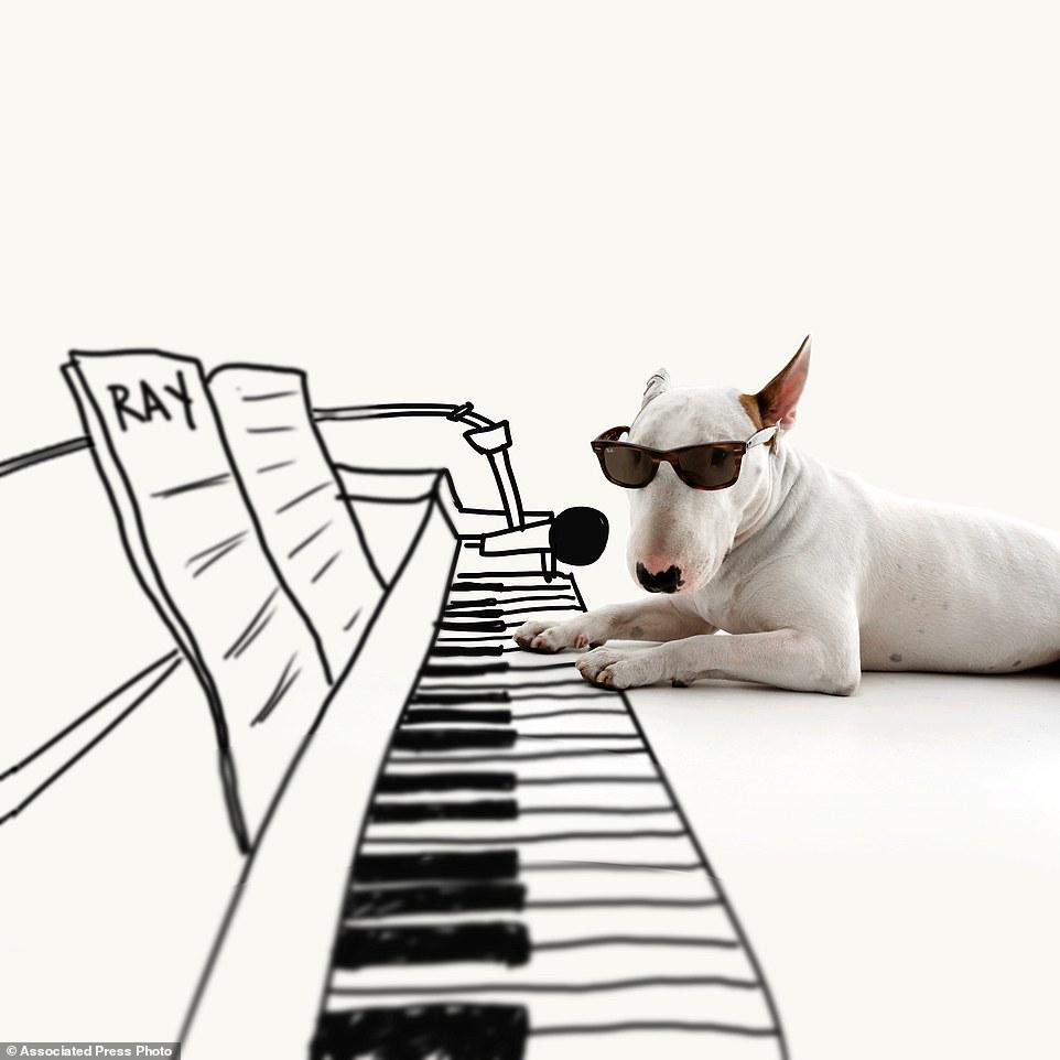 Suonare il piano
