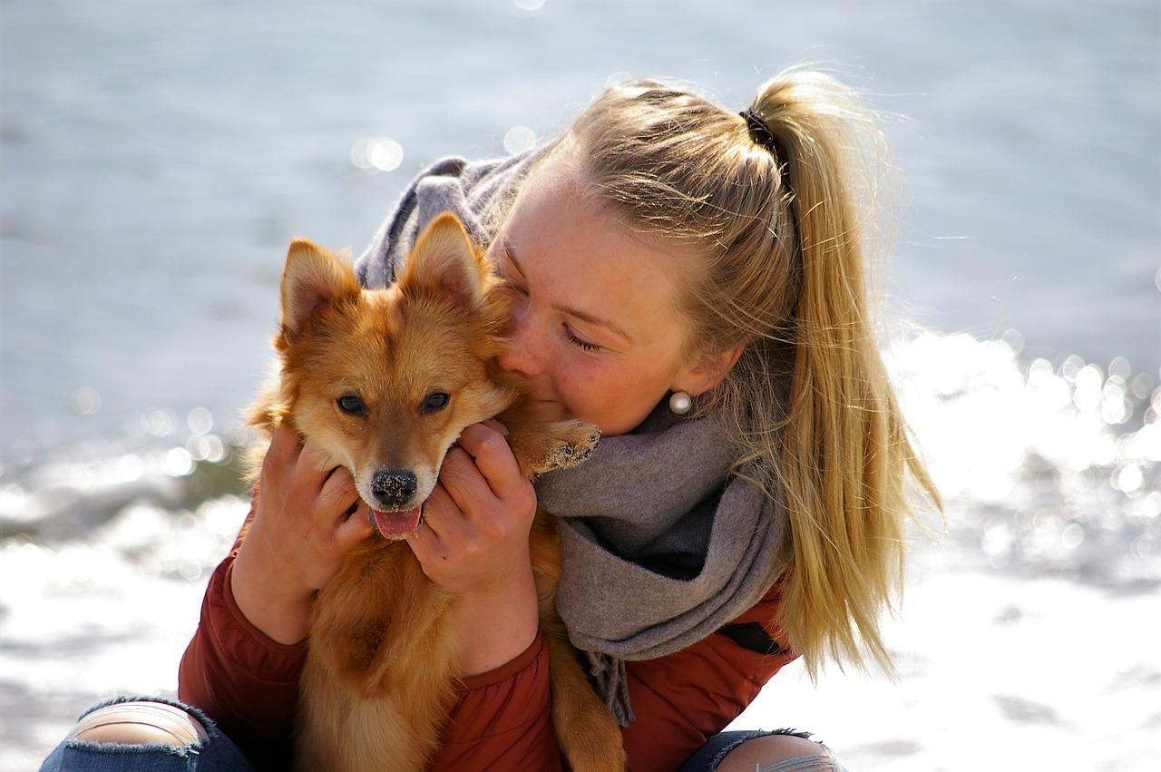 Vuoi prendere un cane? scopri i pro e i contro