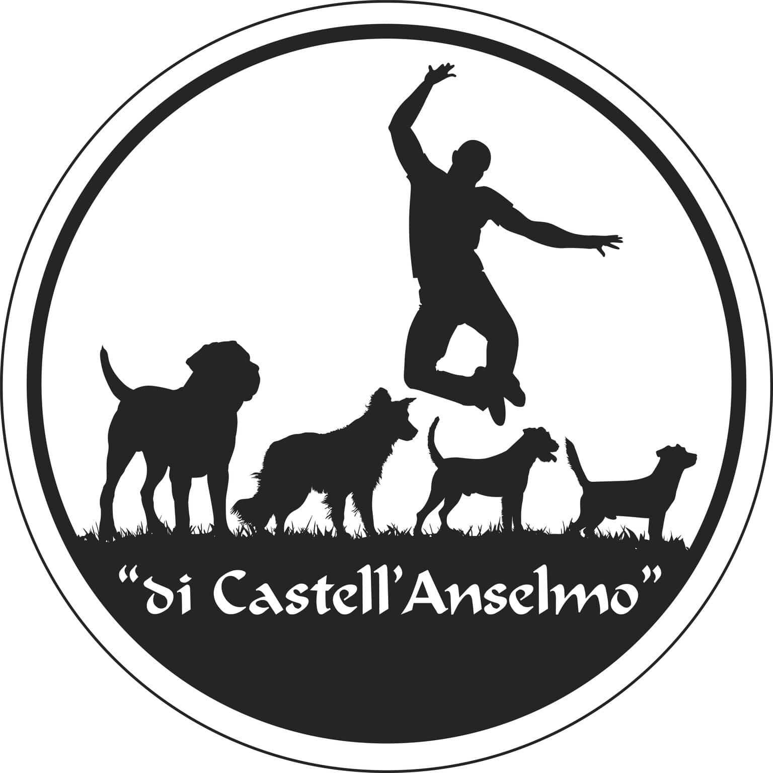 DI CASTELL'ANSELMO