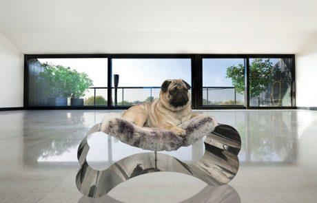 mobili-moderni-per-animali-domestici-in-osso-dacciaio-460x295