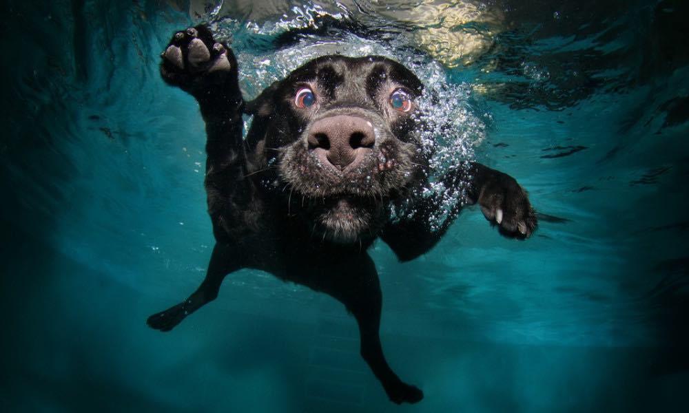 Immergersi sott'acqua