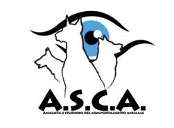 Asd A.S.C.A.