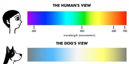 spettro-dei-colori