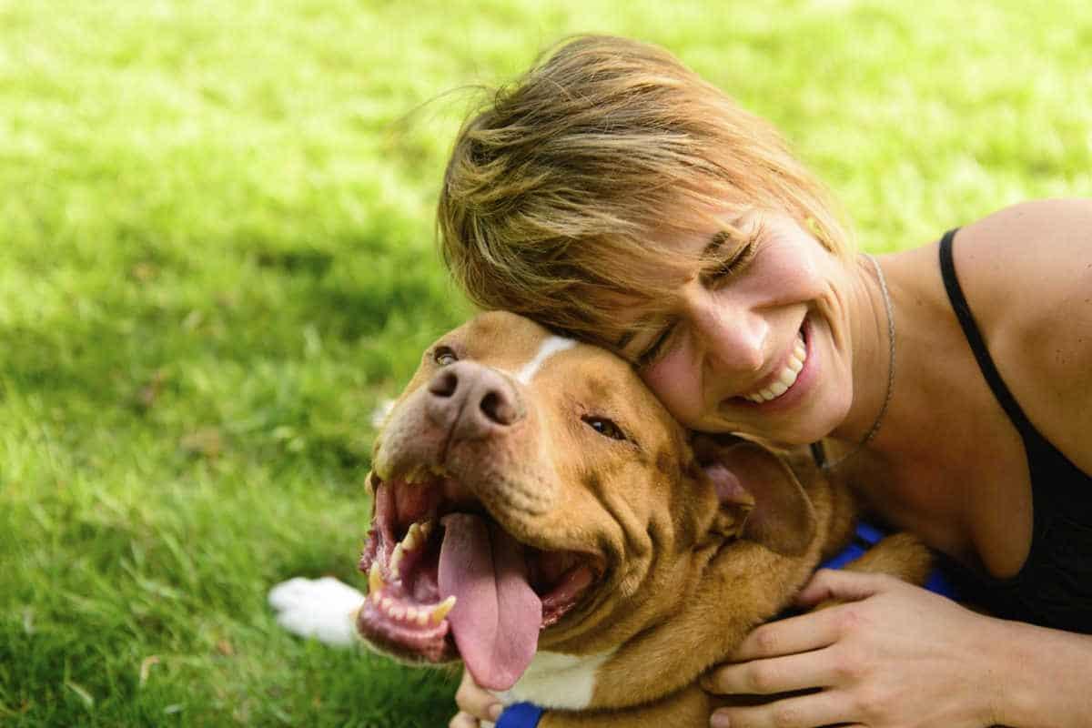 Cremona: 9 edizione del patentino per proprietari di cani