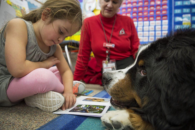 Cani in classe: parte in Sardegna il progetto sperimentale