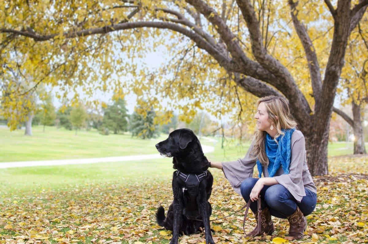 L'educazione del cane incide sul rapporto con il padrone